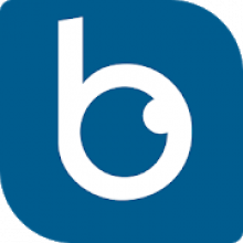Blindo - accessibility ratings